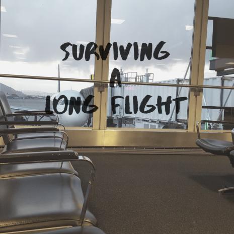 Surviving A Long Flight